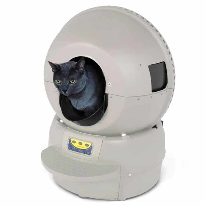 Best Kitty Litter For Automatic Cat Boxes