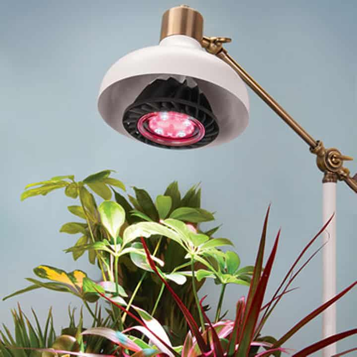 Led Grow Light For Indoor Plants Wicked Gadgetry