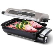 Countertop-Fish-Roaster