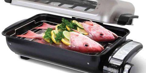 Countertop-Fish-Roaster