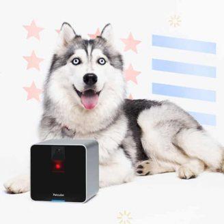 Interactive-Pet-Camera