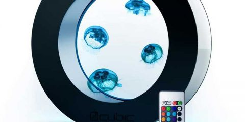 desktop-jellyfish-aquarium
