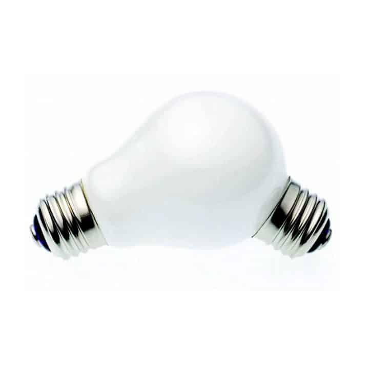 lamp-lamp-bulb