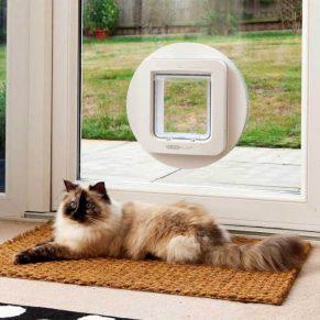 microchip-pet-door