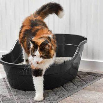 Cat-Litter-Mat