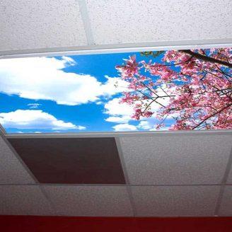 Skypanels ceiling panel