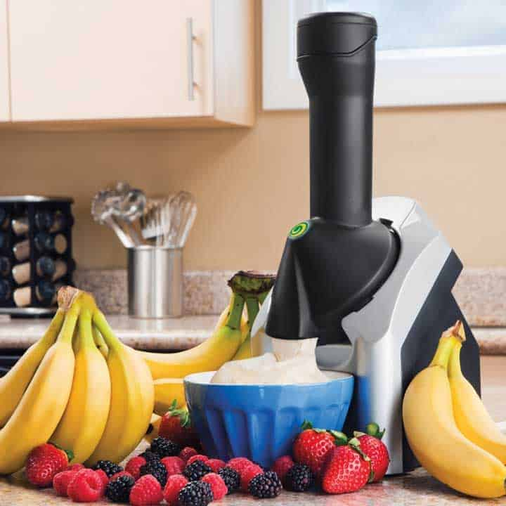 frozen-dessert-maker with fruits