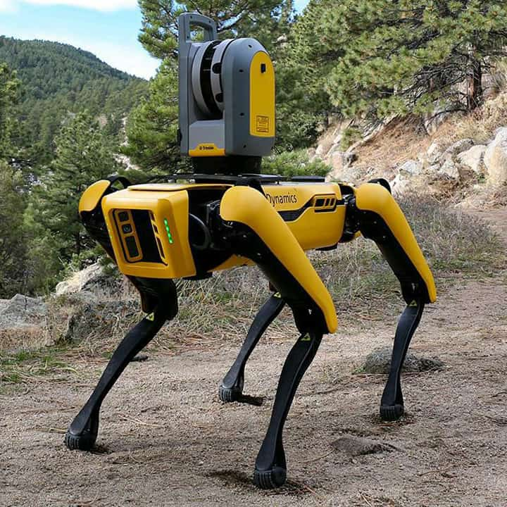 Spot Robot in the Wilderness
