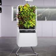Smart Air-Purifying Garden