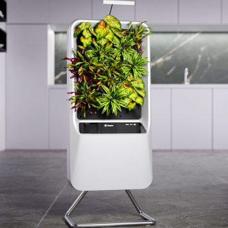 Smart Air-Purifying Garden