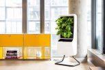 Smart Air-Purifying Garden2
