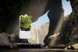 Smart Air-Purifying Garden4