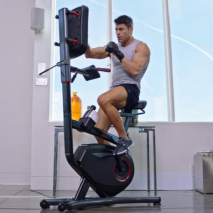 LifeSpan Fitness Cycle Boxer - Upright Exercise Bike with Interactive Boxing Punch Pad.jpg