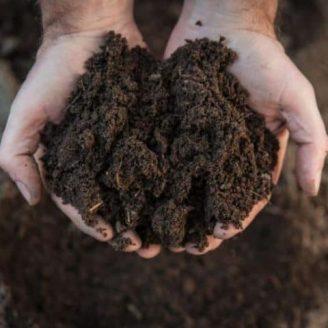 Human Remains Composting