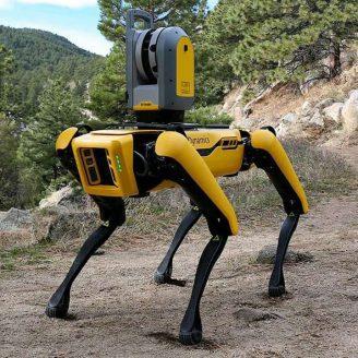 Spot Robot in the Wilderness