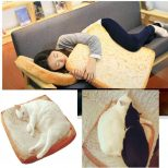 can be used as a couch pillow