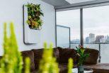 Smart Air-Purifying Garden3