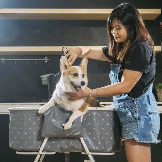 Elevated Foldable Dog Bathtub4.jpg